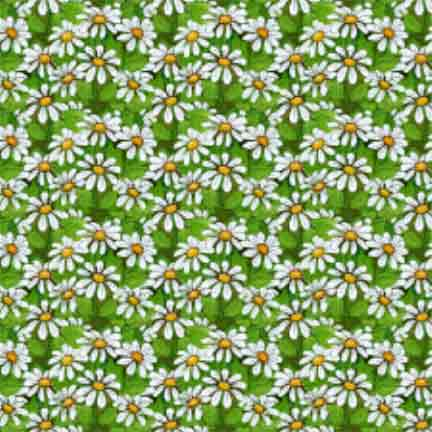 Patchwork Garden Daisy Texture Green/White - Click Image to Close